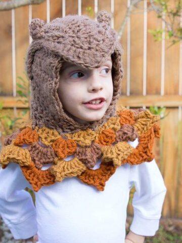 Owl Hooded Crochet Woodland Cowl by Briana K Designs